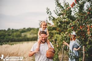 A family picking fruit on a farm for agritainment