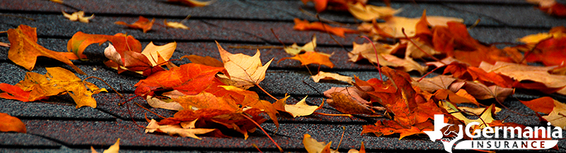 Fall leaves on a home's roof shingles